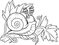 Snail sitting on a branch Stock Photo