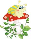Snail sitting on a mushroom Royalty Free Stock Image