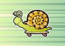 Snail skateboarder. Cartoon snail skateboarder. Vector illustration Royalty Free Stock Photos