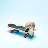 Snail skating Stock Photography
