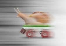 Snail skating motion blur. Background royalty free stock images