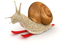 Snail and Skiing (clipping path included) Stock Photos