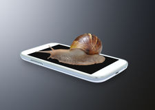 Snail on smartphone. On dark background royalty free stock photography
