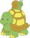 Snail som rider en sköldpadda Royaltyfri Foto