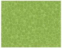 Snail texture green Stock Photos