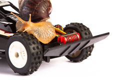 Snail and Tire Stock Photography