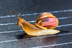 Snail under flag of USA on sports track Stock Images