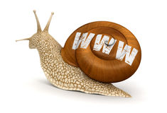 Snail and WWW (clipping path included) Stock Photos