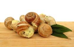 Snailescargot som förbereds som mat Arkivbild