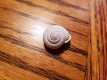 Snailing Daleko od obraz stock