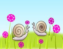 Snails. Two  meeting snails in a flower meadow Stock Photos