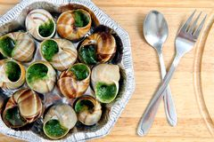 Snails as french gourmet food Royalty Free Stock Photography