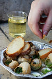 Snails as gourmet food with bread Stock Photography