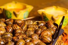Snails Stock Photos