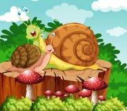 Snails crawling in garden. Illustration Stock Photo