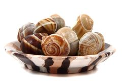 Snails - french gourmet food Royalty Free Stock Photos