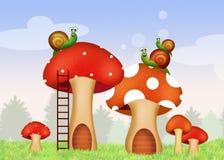 Snails on fungus home Stock Photos