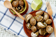 Snails with Garlic Butter Royalty Free Stock Photo