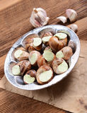 Snails with garlic butter. Tasty snails with garlic butter Stock Photography
