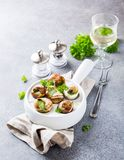 Snails with garlic herbs butter Royalty Free Stock Image