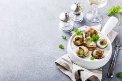 Snails with garlic herbs butter Stock Images