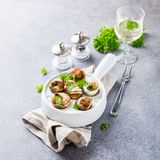 Snails with garlic herbs butter Royalty Free Stock Photography