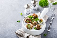 Snails with garlic herbs butter Stock Photos