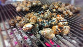Snails grilled  Royalty Free Stock Photo
