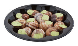 Snails with herb butter and clipping path Stock Photos