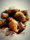 The snails seafood Stock Images