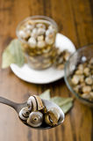 Snails on spoon Stock Photography