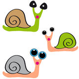 Snails on white background Stock Photography