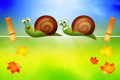 Snails on wire Stock Photos