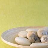 Snailshell and pebble Stock Image