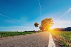 Snak lege asfaltlandweg met zich witte zijlijn en het groene gras uitrekken weg aan een eenzame boom en het veroorzaken van horiz royalty-vrije stock afbeeldingen
