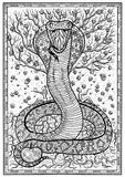 Snake символ с Eve, Адамом, деревом знания и цветков в рамке Стоковая Фотография