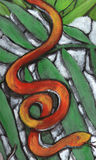 Snake. Between the green leaves and withe rocks there is a orange snake Royalty Free Stock Photos