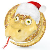 Snake 2013. Snake coiled ring in the cap of Santa Claus Stock Photos