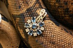 Snake. Brown snake with modern jewelrys Stock Image