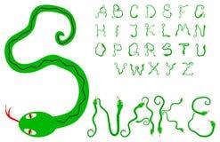 Snake alphabet Stock Image