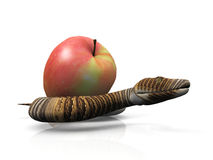 Snake and apple. The snake and the apple Stock Images