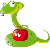 Snake and apple. Green snake and red apple Royalty Free Stock Images