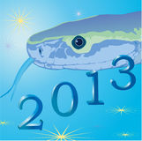 Snake on blue background and symbols of 2013 New Y. Snake and symbols of 2013 New Year royalty free illustration