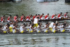 Snake Boat Racing Stock Photos