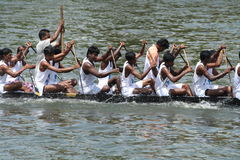 Snake Boat Racing. Participants of Boat race in Alleppey aggressively rowing their snake boat Stock Photography