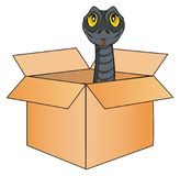 Snake in box Royalty Free Stock Photo