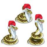 Snake in cap and beard of Santa Claus. Vector Royalty Free Stock Photo