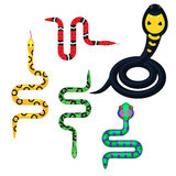 Snake cartoon vector set illustration on white. Royalty Free Stock Photo