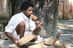 Snake charmer, India. A snake charmer playing a traditional instrument in India Royalty Free Stock Image