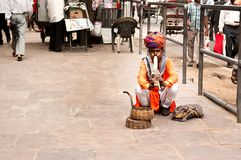 A snake charmer is playing the flute for the cobra sitting on the street near Fort Amber on Dec Stock Image